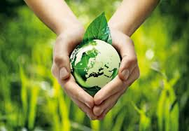Care for Earth